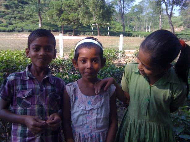 Tea Garden Kids