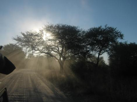 Something I'd wanted to do for so long - in April I went to Botswana for 3 months to volunteer with Skillshare International. While we were there we...